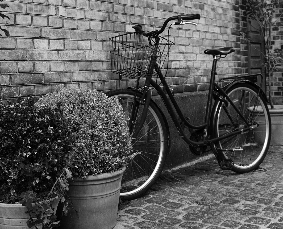 cykel pexels visionpic net 15399701